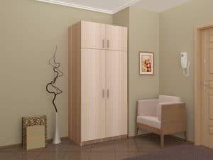 Шкаф двухстворчатый 900мм со штангой и полками фото | интернет-магазин Складно
