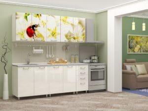 Кухня с фотопечатью Божья коровка 2,0м 15690 рублей, фото 2 | интернет-магазин Складно