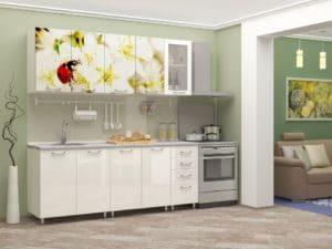 Кухня с фотопечатью Божья коровка 2,0м 15690 рублей, фото 1 | интернет-магазин Складно