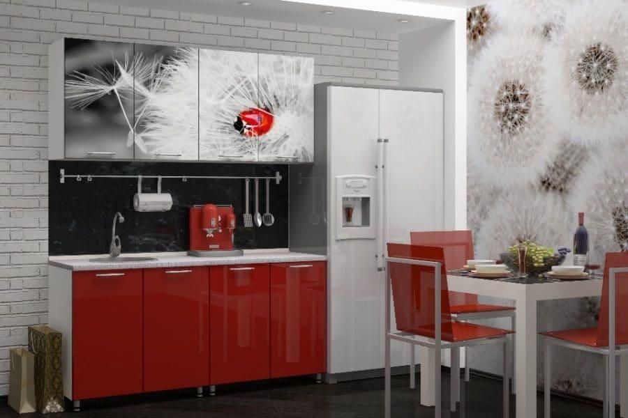 Кухня с фотопечатью Одуванчик 160см фото | интернет-магазин Складно