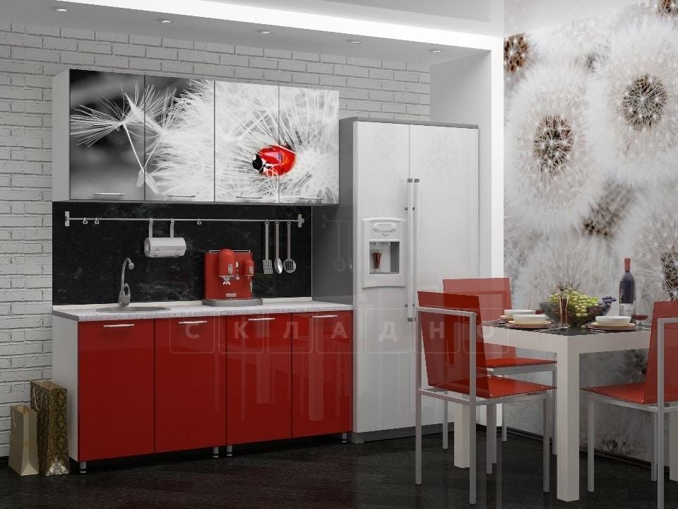 Кухня с фотопечатью Одуванчик 160см фото 1 | интернет-магазин Складно