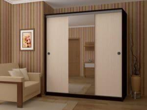 Шкаф-купе Альянс 2,0м с одним зеркалом фото | интернет-магазин Складно