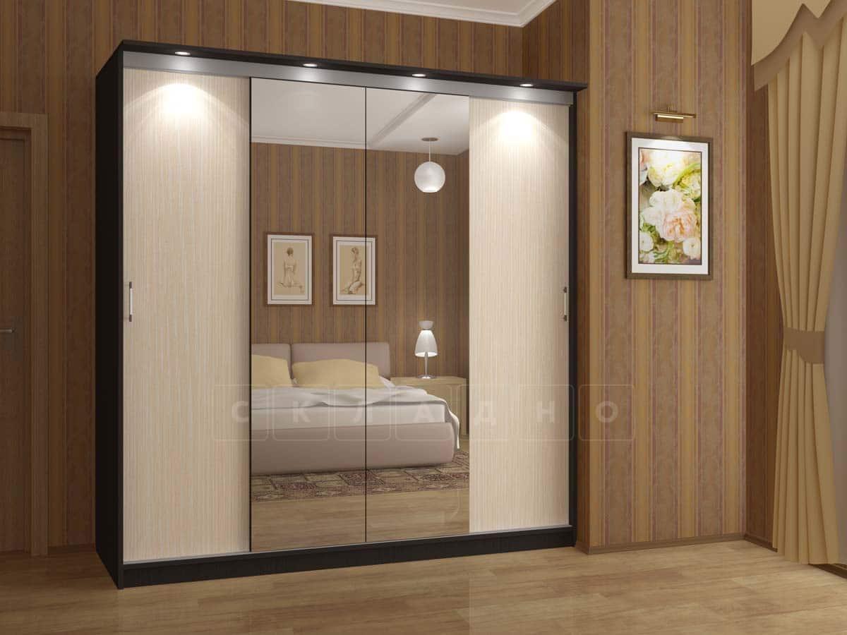 Шкаф-купе Альянс-3 с двумя зеркалами фото 1 | интернет-магазин Складно