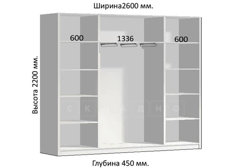 Шкаф-купе Комфорт ширина 260см, модель 2650 фото 1 | интернет-магазин Складно