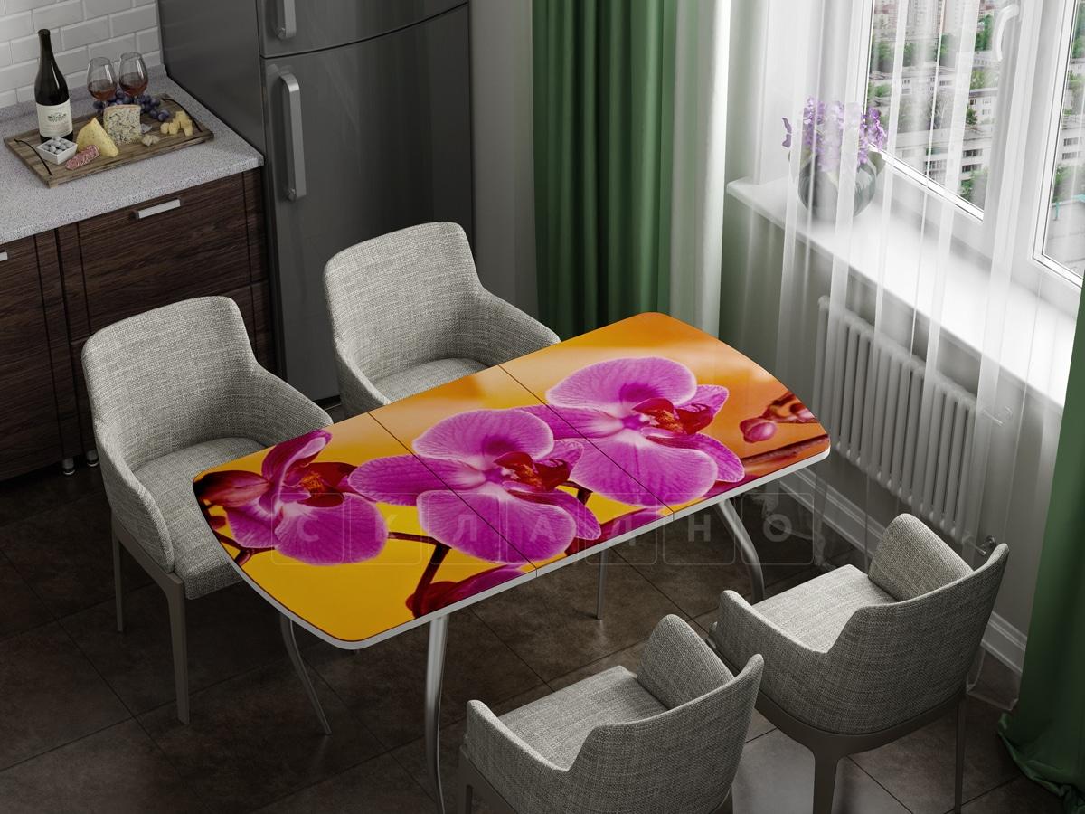 Стол раздвижной стеклянный с фотопечатью Орхидея фото 1 | интернет-магазин Складно