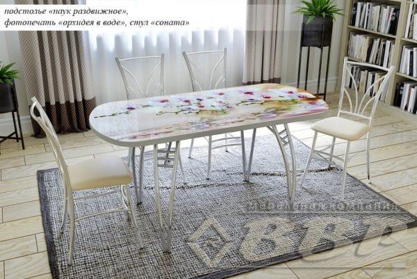 Стол раздвижной стеклянный с фотопечатью Орхидея в воде 150х70 см фото | интернет-магазин Складно