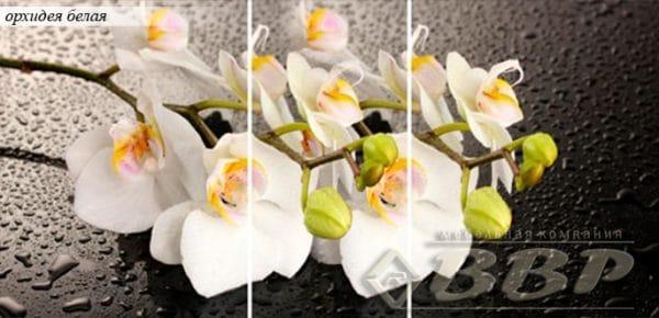 Стол раздвижной стеклянный с фотопечатью Орхидея белая 150х70 см фото | интернет-магазин Складно