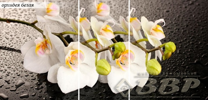 Стол раздвижной стеклянный с фотопечатью Орхидея белая 150х70 см фото 1 | интернет-магазин Складно