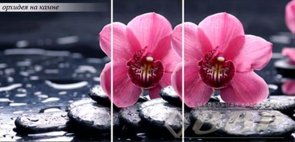Стол раздвижной стеклянный с фотопечатью Орхидея на камне 150х70 см фото | интернет-магазин Складно