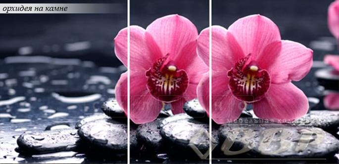 Стол раздвижной стеклянный с фотопечатью Орхидея на камне 150х70 см фото 1 | интернет-магазин Складно
