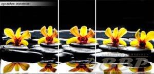 Стол раздвижной стеклянный с фотопечатью Орхидея желтая 150х70 см фото превью | интернет-магазин Складно