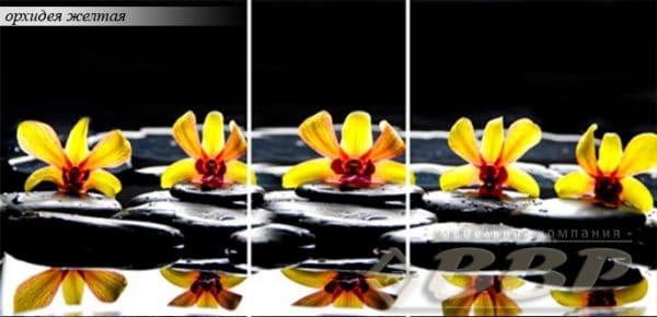 Стол раздвижной стеклянный с фотопечатью Орхидея желтая 150х70 см фото | интернет-магазин Складно