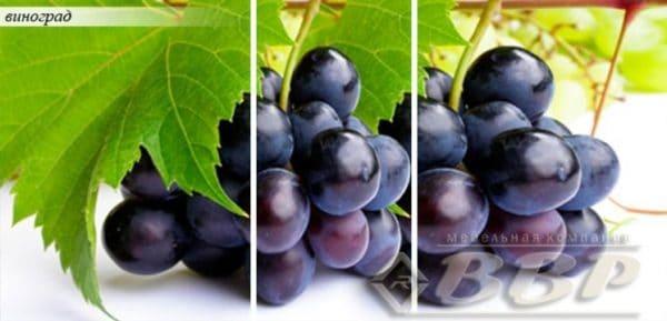 Стол раздвижной стеклянный с фотопечатью Виноград 150х70 см фото | интернет-магазин Складно